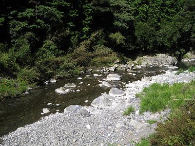 kawa-yamaguti